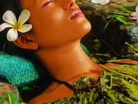 Ayurveda Treatment Package