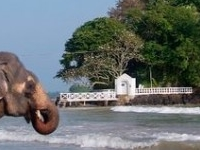 The Gateway to paradise - Visit Sri lanka