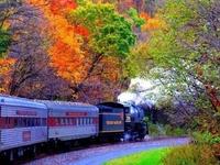 Autumn Train... Wuhan, China.