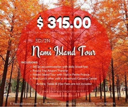 Nami Island Tour Photos
