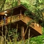 Tree House Plus Houseboat