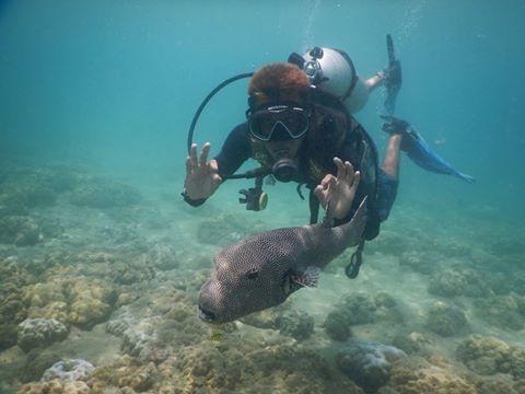 Scuba Diving At Andaman Photos