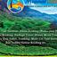 Munnar Travels