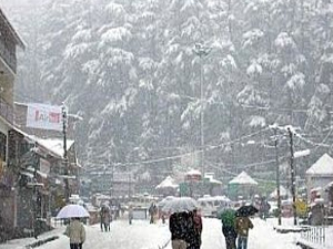8,400 INR pp-Shimla-Kullu-Manali Tour Package by Car Photos