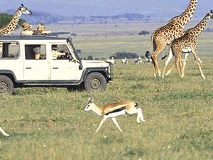 Best of Kenya and Tanzania Photos