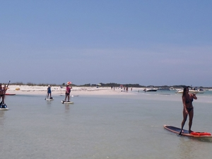 Paddleboard Tour to Shell Island Photos