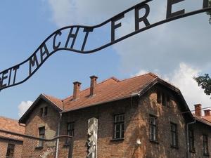 Auschwitz-Birkenau Photos