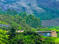 Munnar Kerala
