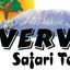 Vervet Tanzania