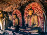 Escape from the Urban Sri Lanka Package