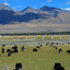 Overlooking The Breathtaking Tibet Land From Train Once You Are Travel To Tibet