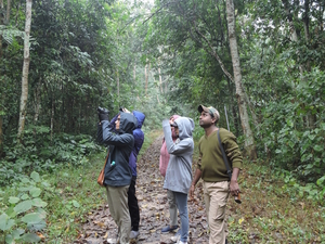 Kaziranga & Nameri National Park Photos