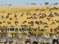 Btt 110 Kenya Tanzania