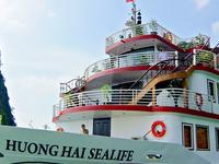 Best Price on Halong Huong Hai Sealife Cruise