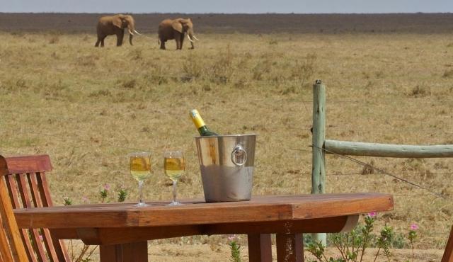 Easter Getaway to Tsavo National Park Photos