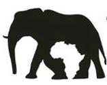 Top Safaris