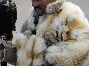 Mongolian Eagle Festival Fotos