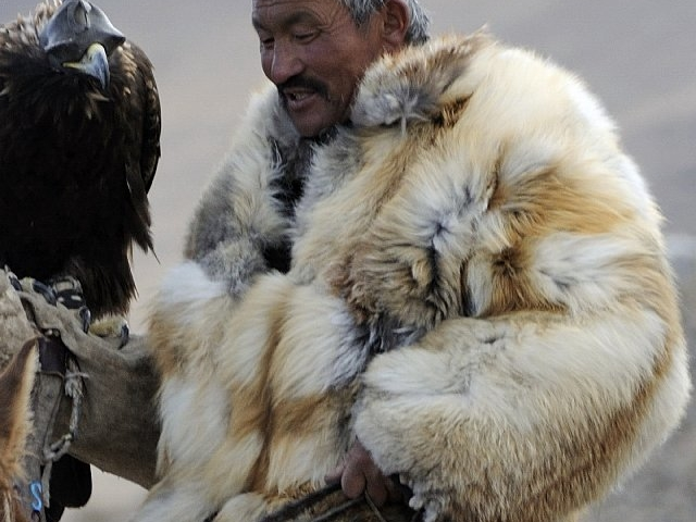 Mongolian Eagle Festival Photos