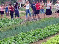 Hanoi Countryside & Cooking Tour