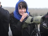 Iran Birdwatching and Nature Tour