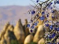 North Cappadocia