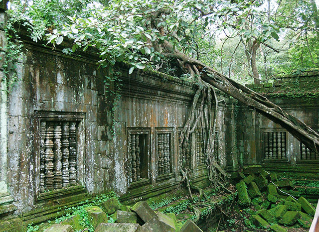 Beng Mealea Temple Ruins Photos