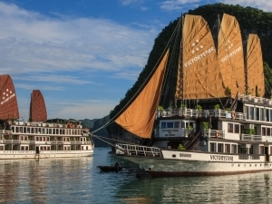 Vietnam Most Special: Hanoi Ancient- Halong Bay Cruises- Phu Quoc Island Fotos