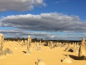Pinnacles Desert, Wildlife Park&Lancelin Sand Dunes Photos