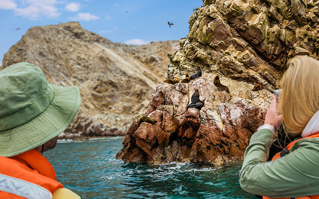 Ballestas Islands & National Reserve of Paracas Photos