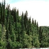 Alagnak River