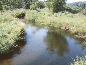 Ala del río