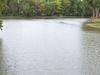 Blanchard River