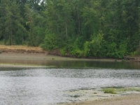 Calapooia River