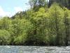 McKenzie River
