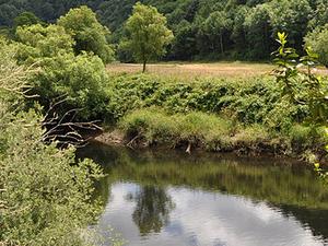 Millicoma Río