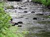 North Yamhill River