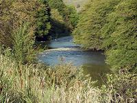 Sur Tenedor John Day River