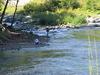 Umpqua River