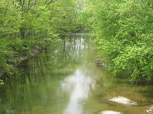 Chillisquaque Creek