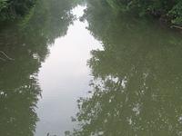 Connoquenessing Creek