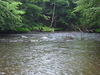 Tionesta Creek