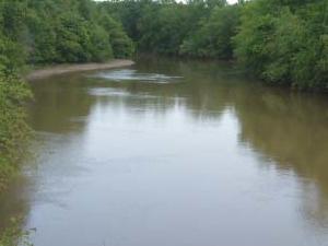 Obion Río
