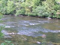 Tellico Río