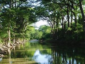 Río Medina