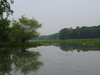 Little Hunting Creek