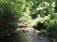 Thornton River