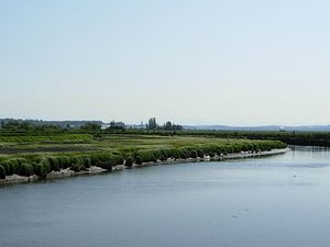 Samish Río