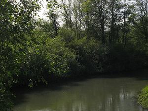 Skookumchuck Río