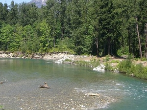 Stehekin Río