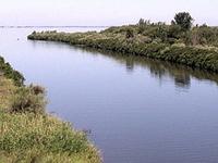 Walla Walla River